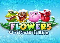 Flowers Christmas Edition Online Slot Game