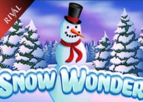 Snow Wonder slot